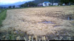 稲刈りも終了しました。